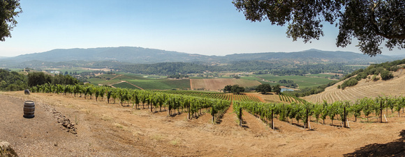 Sonoma Valley from Kunde Hill Top